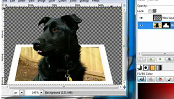 gimp transparent background tutorial