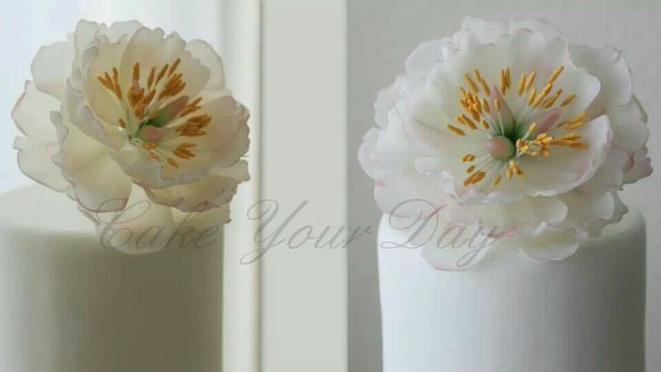 rice paper flowers tutorial