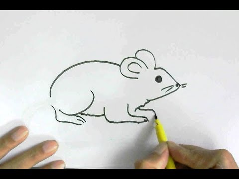 mouse tutorial for beginners