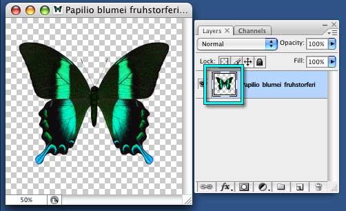 photoshop alpha channel tutorial