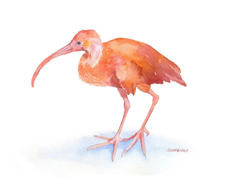 ibis paint x tutorial