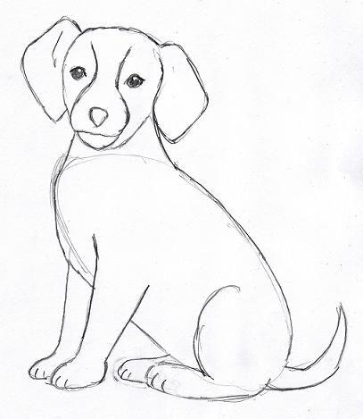 easy dog drawing tutorial