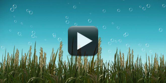 joomla 3.0 tutorial for beginners