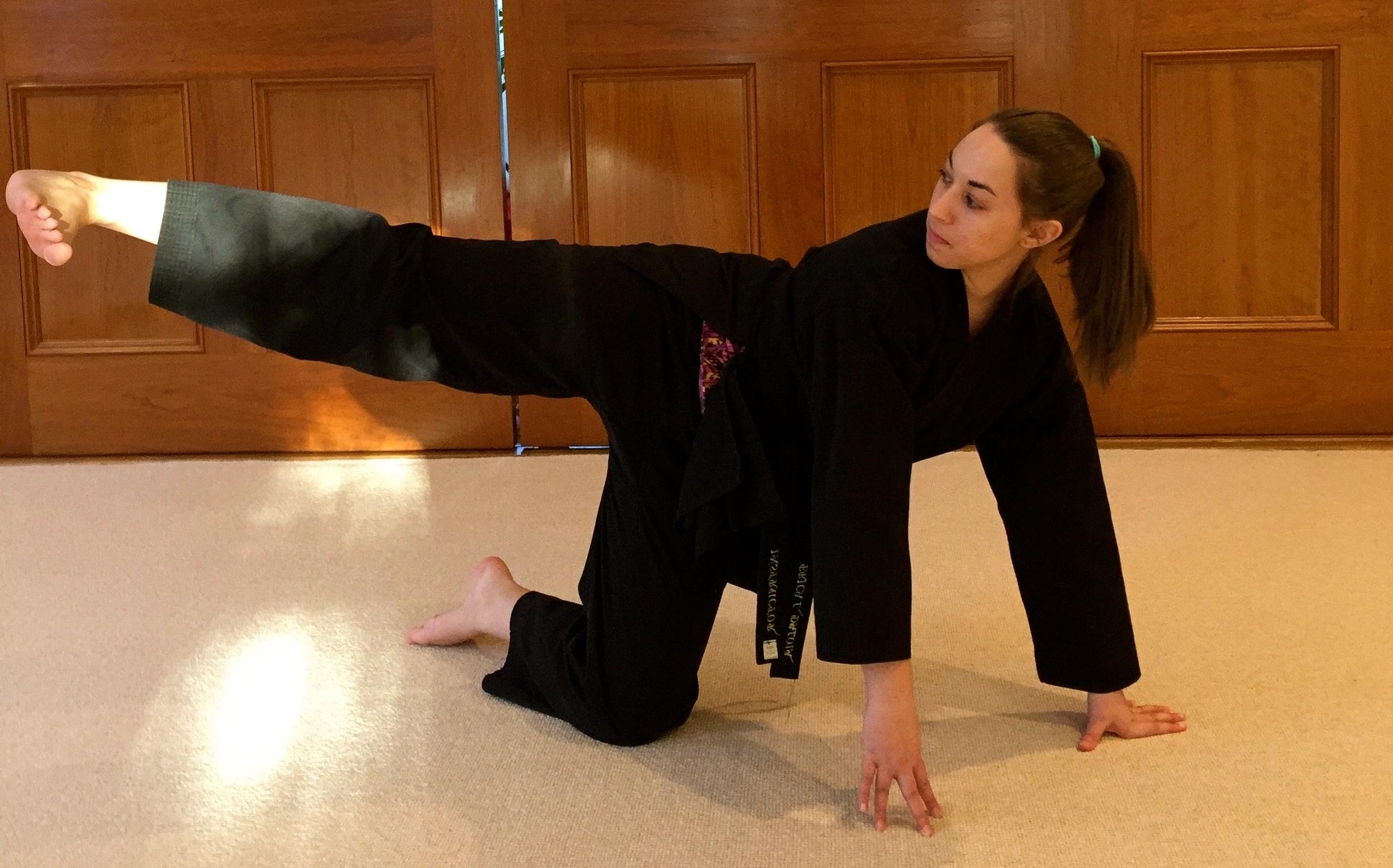 karate tutorial for beginners
