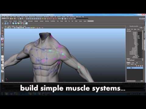 maya rigging tutorial for beginners