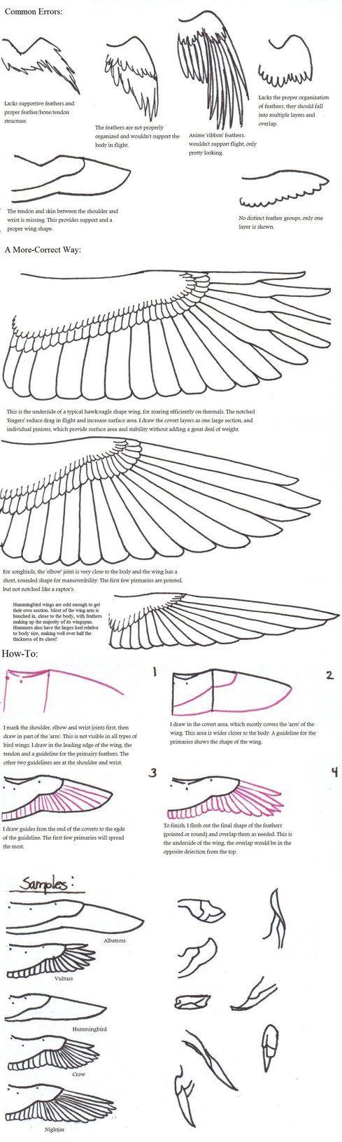 wings 3d tutorial beginners