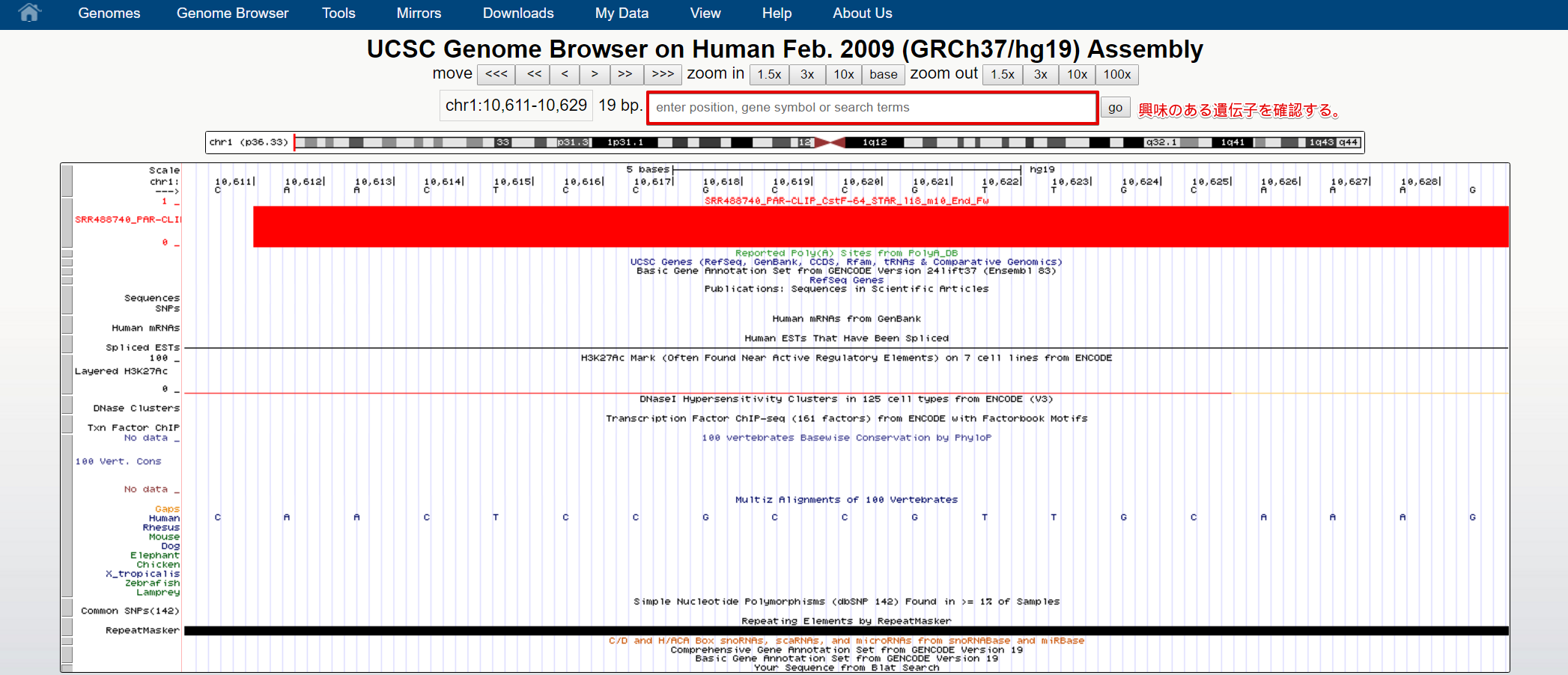ucsc genome browser tutorial