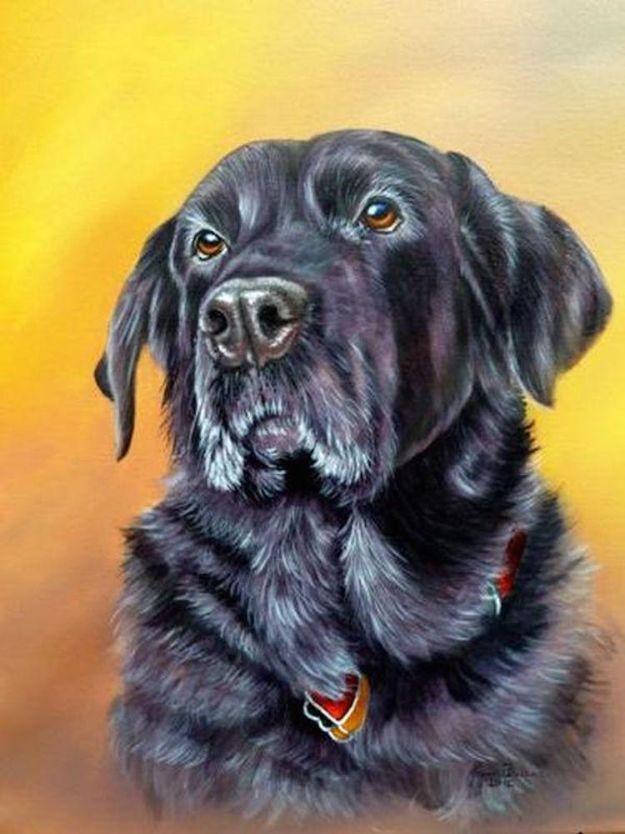 oil painting animals tutorial
