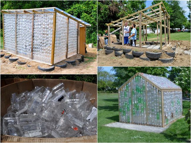 plastic bottle greenhouse tutorial