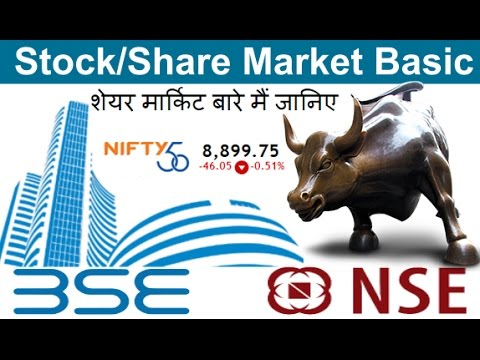 stocks and shares tutorial