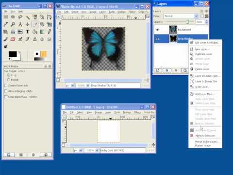 delphi database programming tutorial