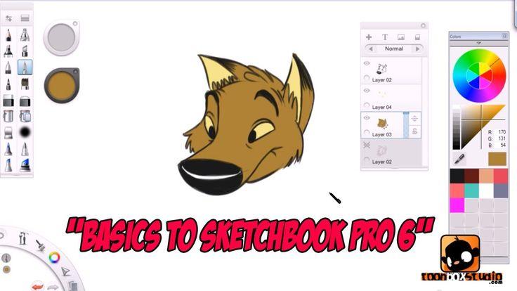 sketchbook tutorial for beginners