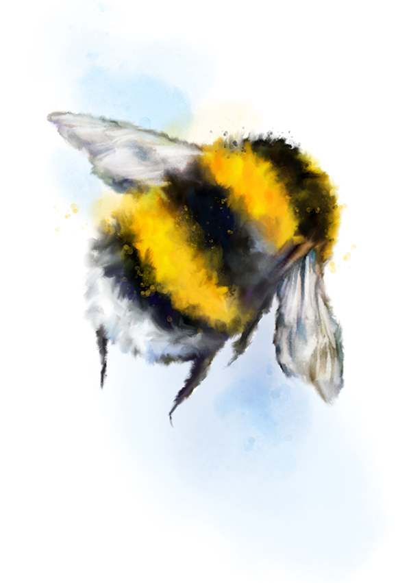 flight of the bumblebee tutorial