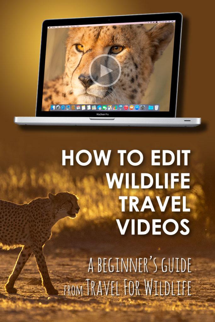 adobe premiere pro tutorial for beginners pdf