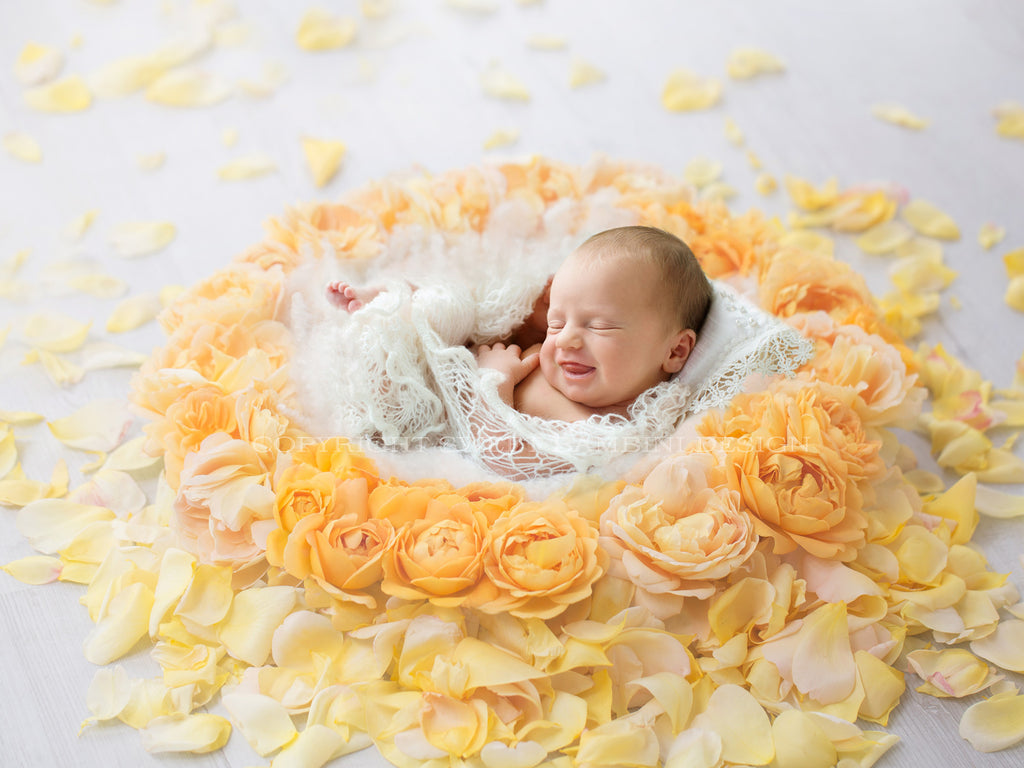 newborn photography tutorial youtube