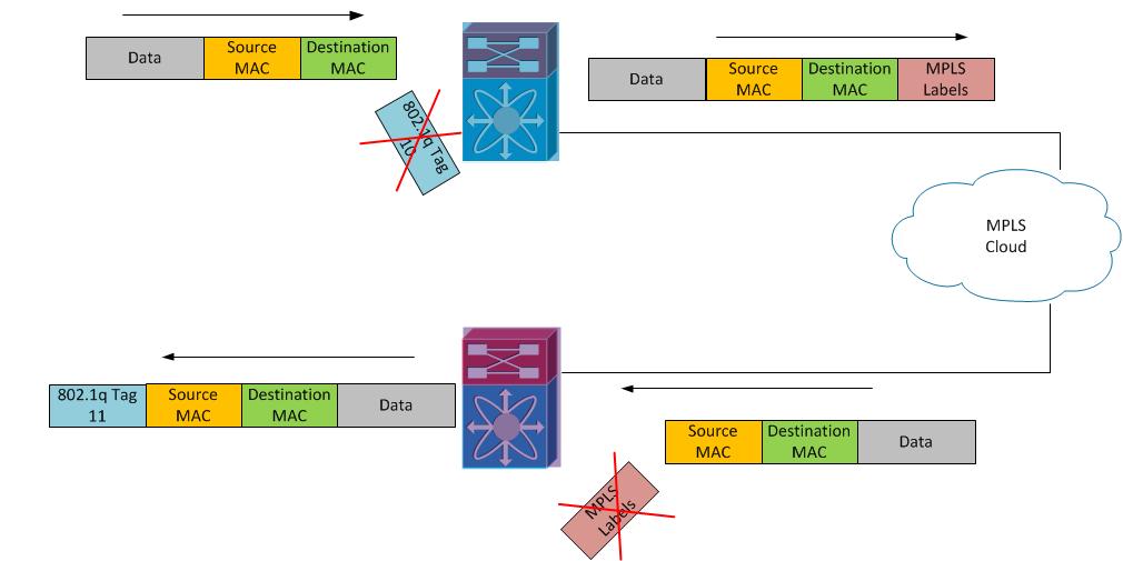 ethernet virtual circuit tutorial