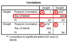 digital image correlation tutorial