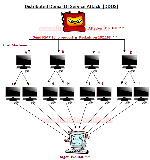 dns amplification attack tutorial