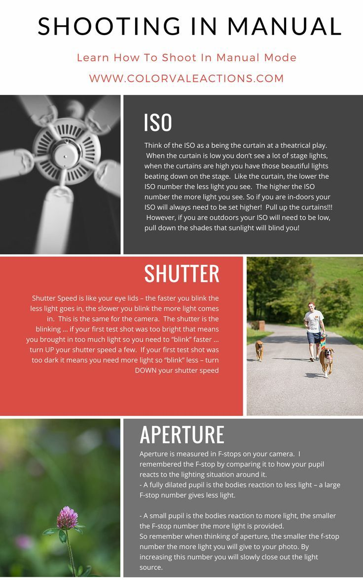 dslr photography tutorial for beginners