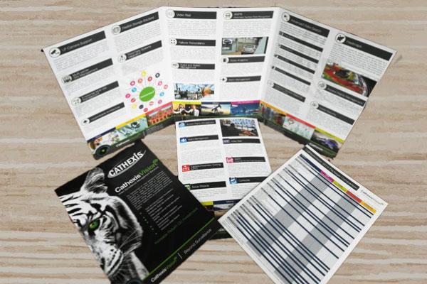 email marketing bangla tutorial