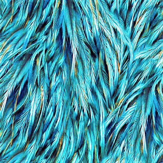 peacock feather painting tutorial