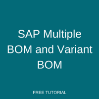 sap testing tutorial for beginners