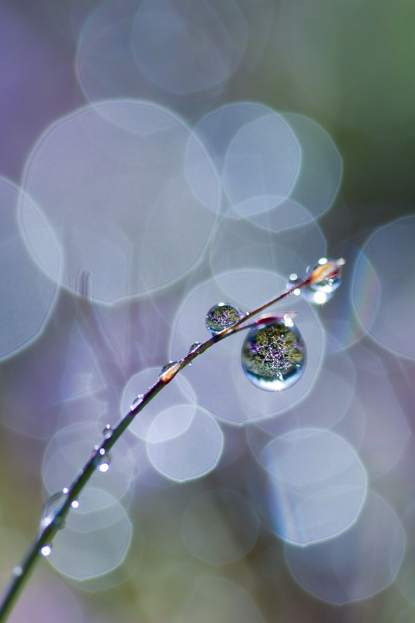 water drop reflection photography tutorial
